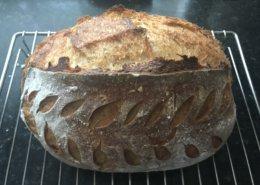 No knead Sourdough