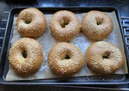 Sourdough bagels covered in sesame seeds