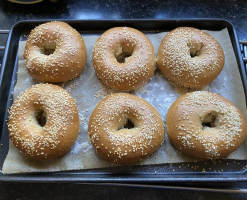 Sourdough bagels covered in sesame seeds